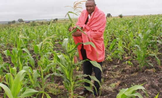 Farmers in Kajiado County offered Ksh 44M grant