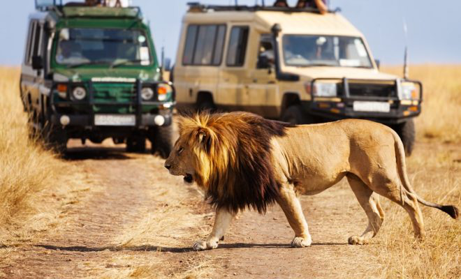 Kenya listed among nine countries to visit by Forbes